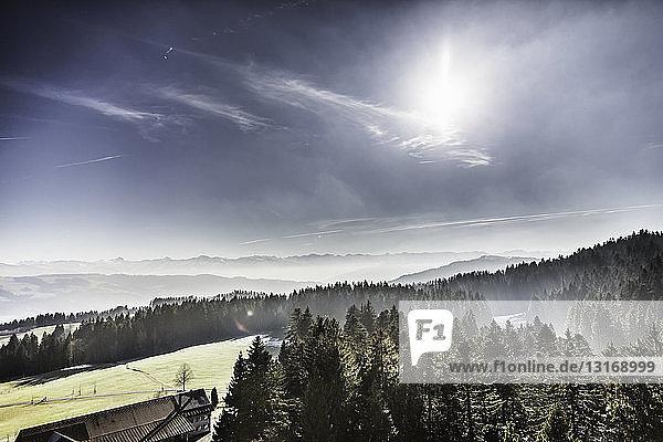 Hügellandschaft mit fernen Bergnebeln  Allgäu  Deutschland