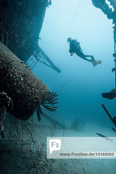 Diver examining underwater shipwreck
