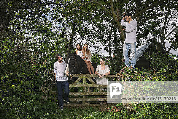 Portrait of five young adults and horse at forest gate