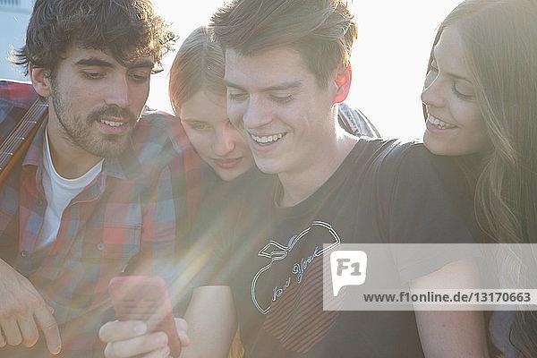 Vier Freunde schauen auf Smartphone