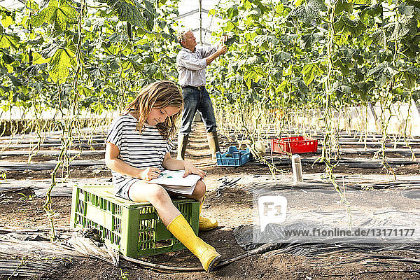 Girl sitting on crate in hothouse drawing while grandfather works behind