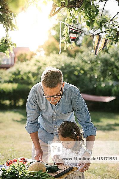 Großvater hilft Enkelin beim Gemüseschneiden bei Tisch im Hinterhof