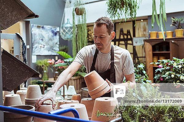 Männlicher Besitzer mittlerer Erwachsener arrangiert Terrakotten im Laden