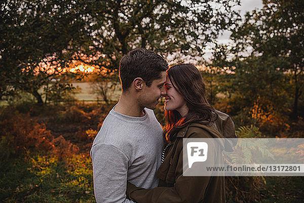 Glückliches verliebtes Paar in herbstlicher Natur bei Sonnenuntergang