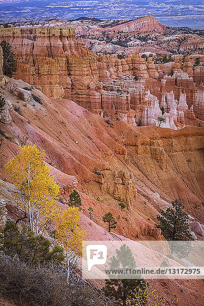 USA  Utah  Felsformationen im Bryce-Canyon-Nationalpark