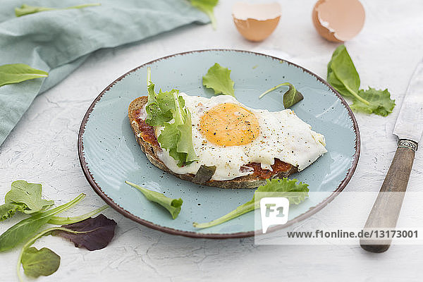 Fried egg on slice of brown bread coated with paprika cream on plate