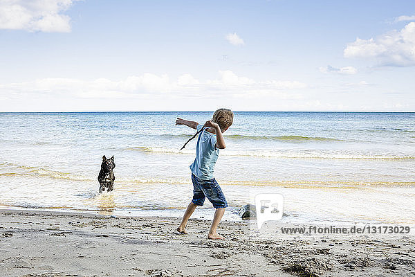 Boy playing with dog at the beach