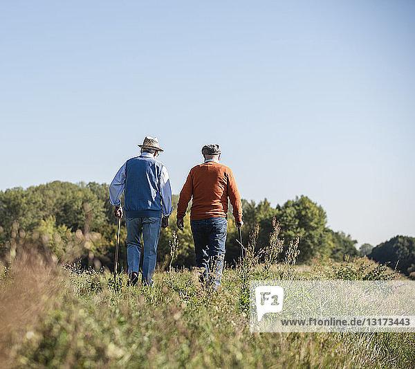 Zwei alte Freunde machen einen Spaziergang durch die Felder und reden über alte Zeiten
