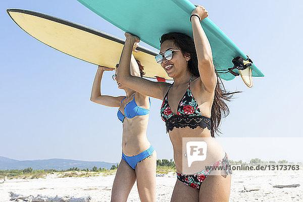 Freunde gehen surfen und tragen Surfbretter auf dem Kopf