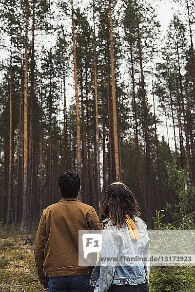 Finland  Lapland  rear view of young couple standing in rural landscape
