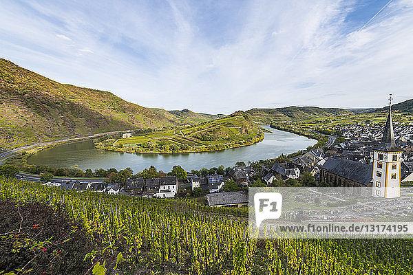 Deutschland  Rheinland-Pfalz  Weinberge oberhalb von Bremm an der Mosel