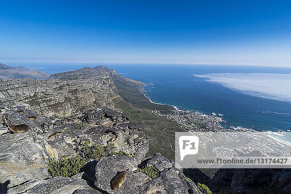 South Africa  view over Camps Bay  Cape Town  Table mountain