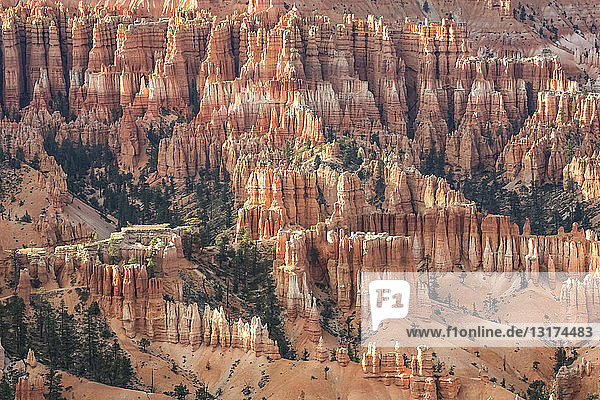 USA  Utah  Felsformationen im Bryce-Canyon-Nationalpark  Hoodoos