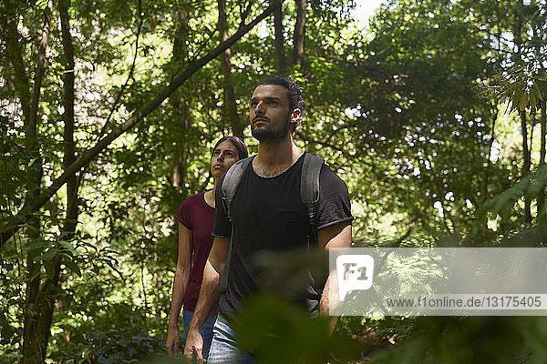 Spanien  Kanarische Inseln  La Palma  Paar beim Spaziergang durch einen Wald  das sich umsieht