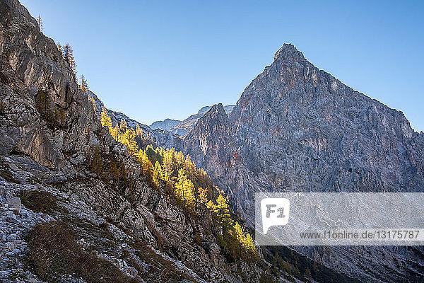 Deutschland  Bayern  Oberbayern  Berchtesgadener Land  Nationalpark Berchtesgaden