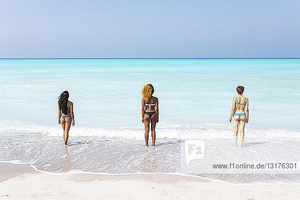 Junge Frauen am Meer stehend  Blick in die Ferne  Rückansicht