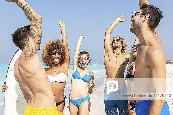 Glückliche Freunde jubeln am Strand