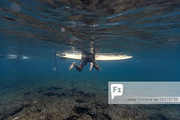 Maledives  Under water view of surfer on surfboard  underwater shot