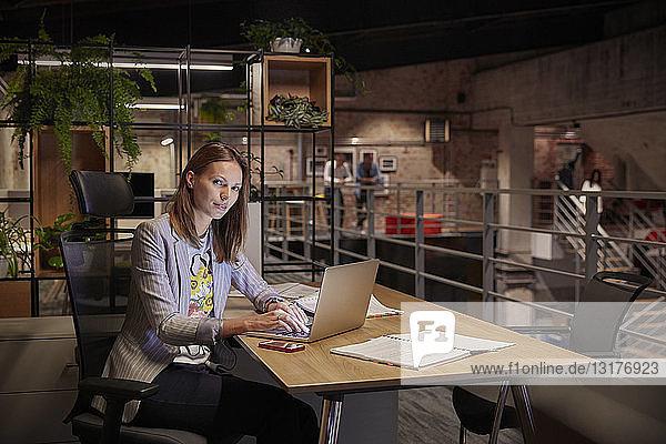 Businesswoman working in modern office  using laptop
