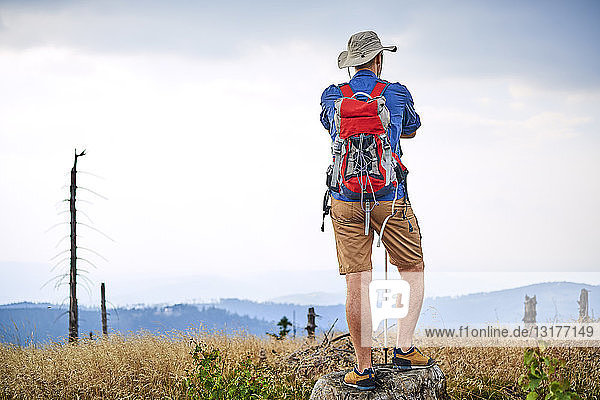 Rear view of man standing on tree stump during hiking trip