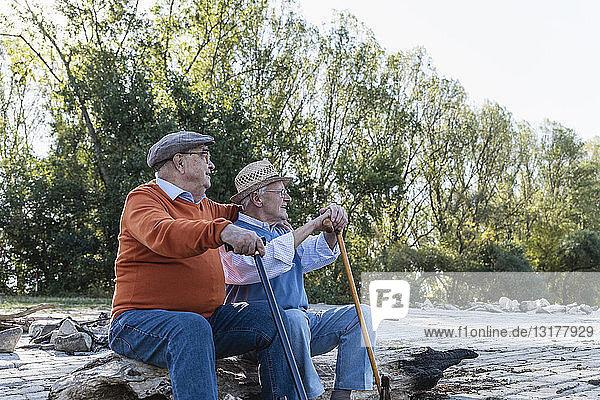 Zwei alte Freunde sitzen auf einem Baumstamm am Flussufer und teilen ihre Erinnerungen