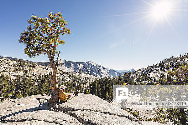 USA  California  Yosemite National Park  hiker leaning on tree