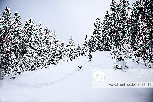 Austria  Altenmarkt-Zauchensee  young woman with dog on snowshoe hike in winter forest