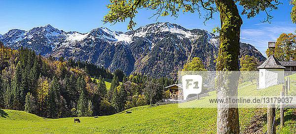 Deutschland  Bayern  Allgäu  Allgäuer Alpen  Dietersbachtal  Gerstruben  Bauernhaus  Bergbauernhof  ehemaliges Bauerndorf
