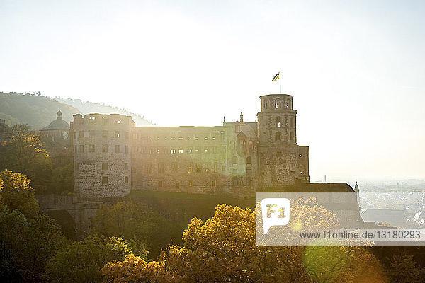 Deutschland  Baden-Württemberg  Heidelberg  Heidelberger Schloss  Ruine