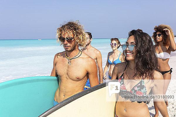Freunde  die Spaß haben  am Strand spazieren gehen  Surfbretter tragen