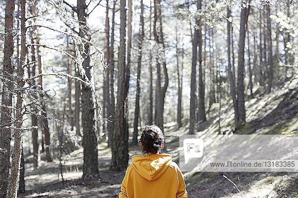 Rückansicht einer jungen Frau mit gelbem Pullover im Wald