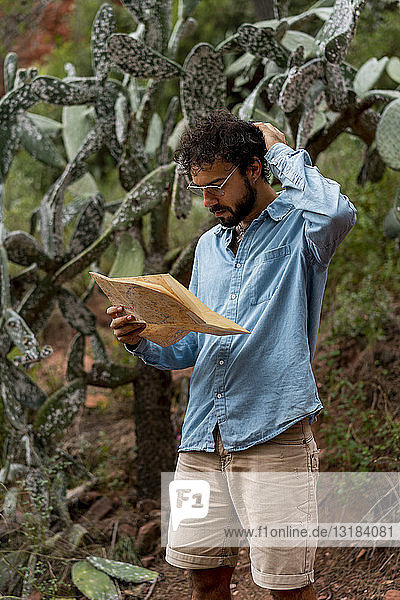 Young man standing in nature  looking at map