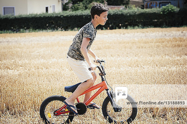 Boy riding bicycle in sunny rural field