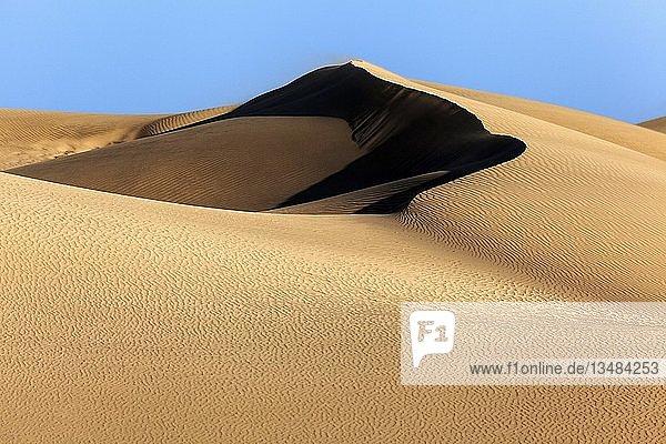 Dünenlandschaft  Dünen von Maspalomas  Dunas de Maspalomas  Strukturen im Sand  Naturschutzgebiet  Gran Canaria  Kanarische Inseln  Spanien  Europa