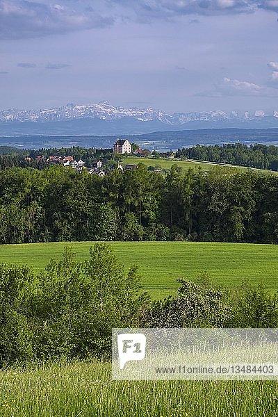 Ausblick zum Schloss Freudental auf dem Bodanrück  hinten Appenzeller Alpen  Bodenseeregion  Baden-Württemberg  Deutschland  Europa