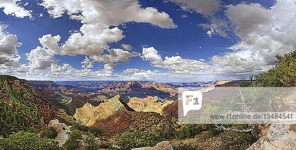 Ausblick auf den Grand Canyon  Aussichtspunkt Mather Point  South Rim  Grand Canyon  bei Tusayan  Arizona  USA  Nordamerika