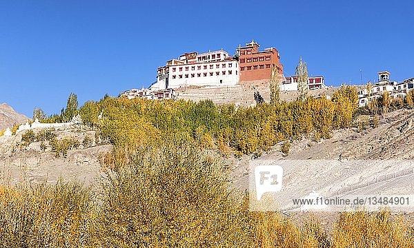 Matho Kloster  Ladakh  Jammu und Kaschmir  Indien  Asien