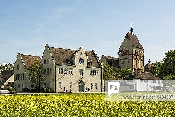 Münster St. Maria und Markus  Kloster Reichenau  Mittelzell  Insel Reichenau  Bodensee  Baden-Württemberg  Deutschland  Europa
