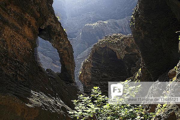 Schlucht Barranco de Masca  Teneriffa  Kanarische Insel  Spanien  Europa
