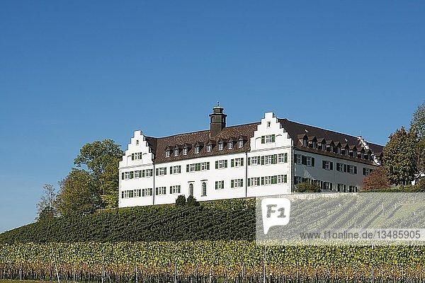 Schloss Hersberg mit Weinberg  Immenstaad  Bodensee  Baden-Württemberg  Deutschland  Europa