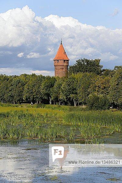 Fluss Nogat und Turm  Malbork  Pommern  Polen  Europa