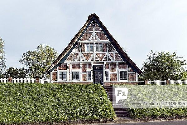 Altländer Bauernhaus  Fachwerkhaus mit Reetdach  Mittelnkirchen  Lühe  Altes Land  Niedersachsen  Deutschland  Europa