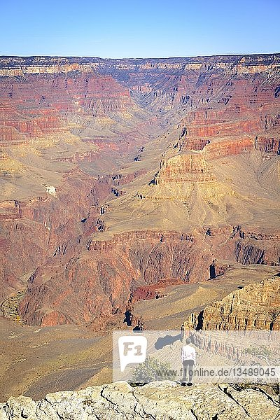 Frau  Person steht vor der gigantischen Schlucht des Grand Canyon  Blick vom Rim Trail  zwischen Mather Point und Yavapai Point  erodierte Felslandschaft  South Rim  Grand Canyon Nationalpark  bei Tusayan  Arizona  USA  Nordamerika