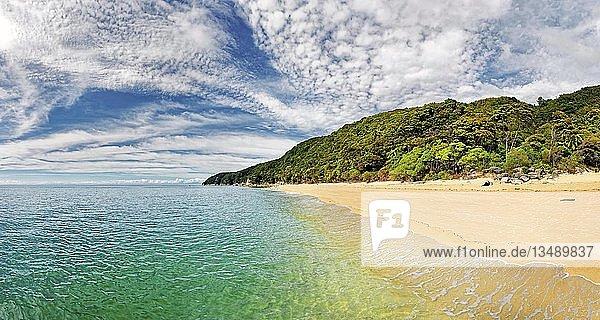 Goldgelber Sandstrand mit tropischer Vegetation  Tonga Quarryd  Tonga Bay  Abel Tasman Nationalpark  Tasman  Südinsel  Neuseeland  Ozeanien