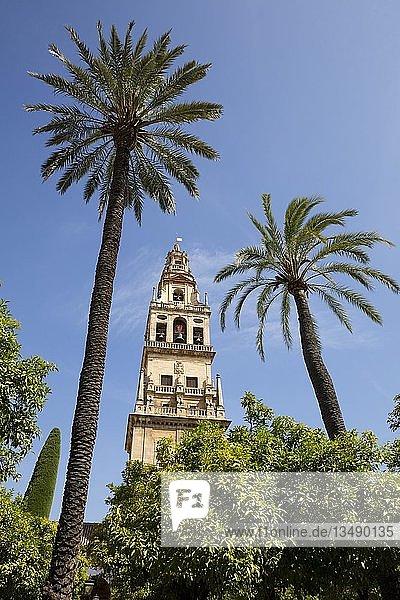 Glockenturm Torre del Alminar  Mezquita  Kathedrale von Cordoba  Cordoba  Andalusien  Spanien  Europa