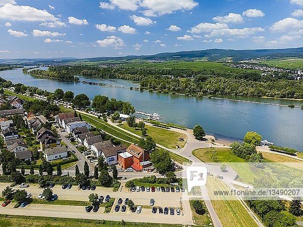Luftbild über Heidesheim auf den Rhein  Heidesheim am Rhein  Rheinland-Pfalz  Deutschland  Europa