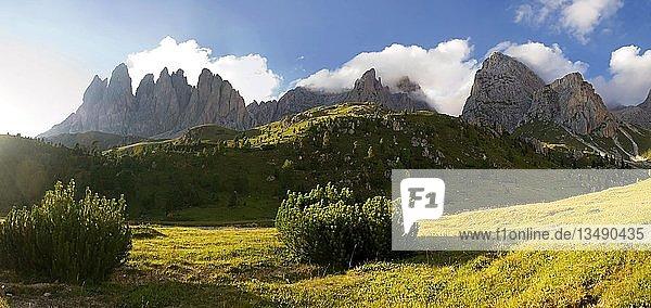 Im abendlichen Licht die Gipfel der Geisler Gruppe auf der Seceda Hochebene Nähe Regensburger Hütte  Nationalpark Puez-Geisler  Wolkenstein  Südtirol  Italien  Europa