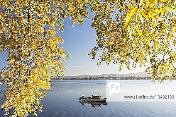 Boot im ruhigen See  Herbststimmung  Bodensee  Allensbach  Baden-Württemberg  Deutschland  Europa