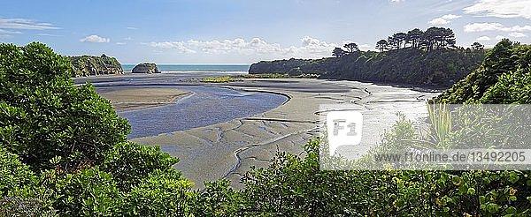 Bucht Three Sisters bei Ebbe  Tongaporutu  Nordinsel  Neuseeland  Ozeanien