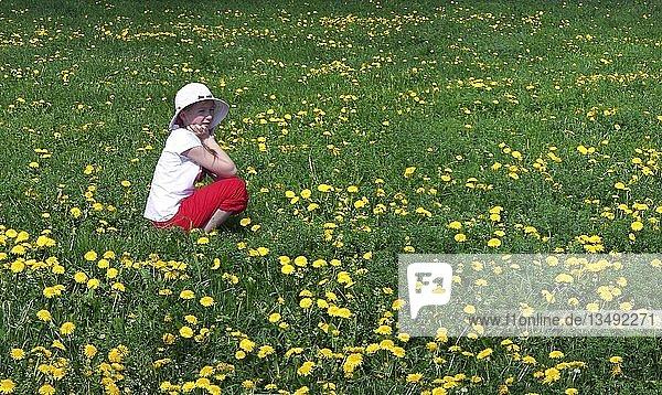 Mädchen mit Hut sitzend in einer Löwenzahnwiese
